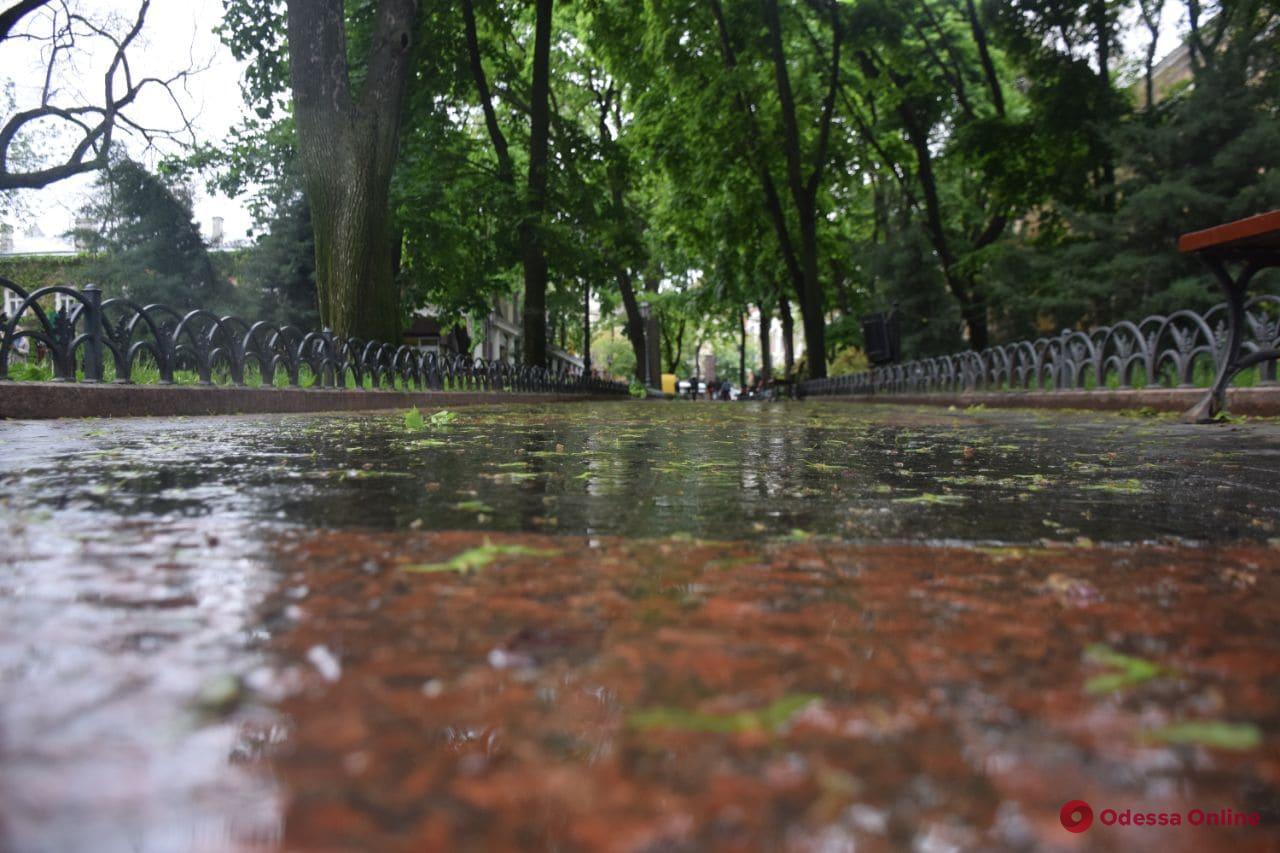 В последний день весны в Одессе будет ветрено и дождливо