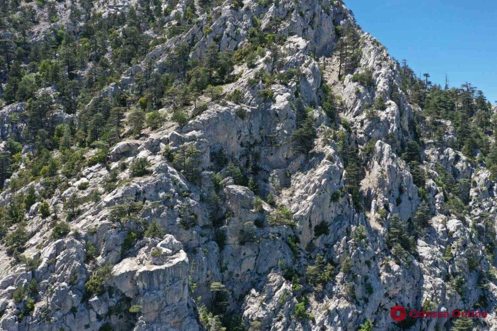 В Турции третью неделю ищут пропавшую в горах альпинистку из Одессы