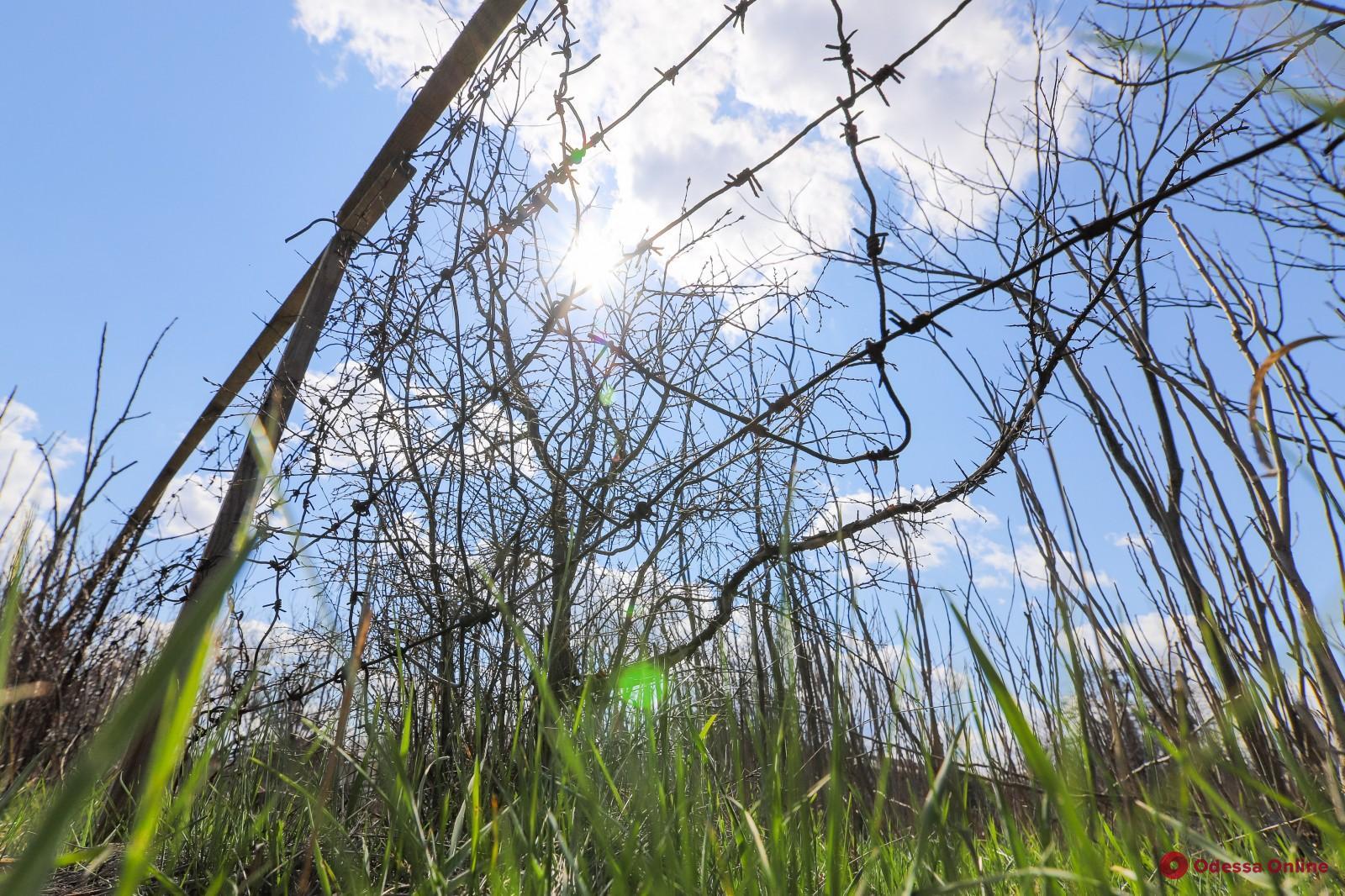 В Одессе на 6-м километре Овидиопольской дороги начнут поиски тел жертв политрепрессий
