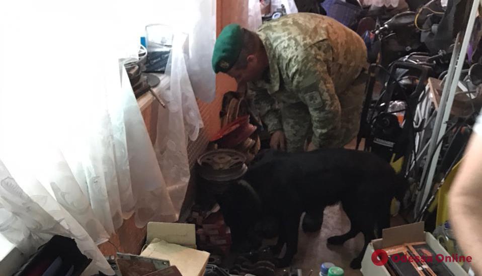 Служебная собака нашла у жителя Одесской области тайник с «травкой»