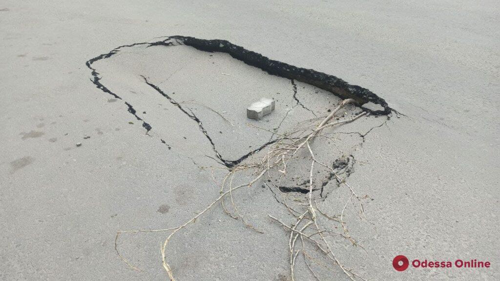 В районе улицы Маршала Говорова на участке дороги образовались провалы