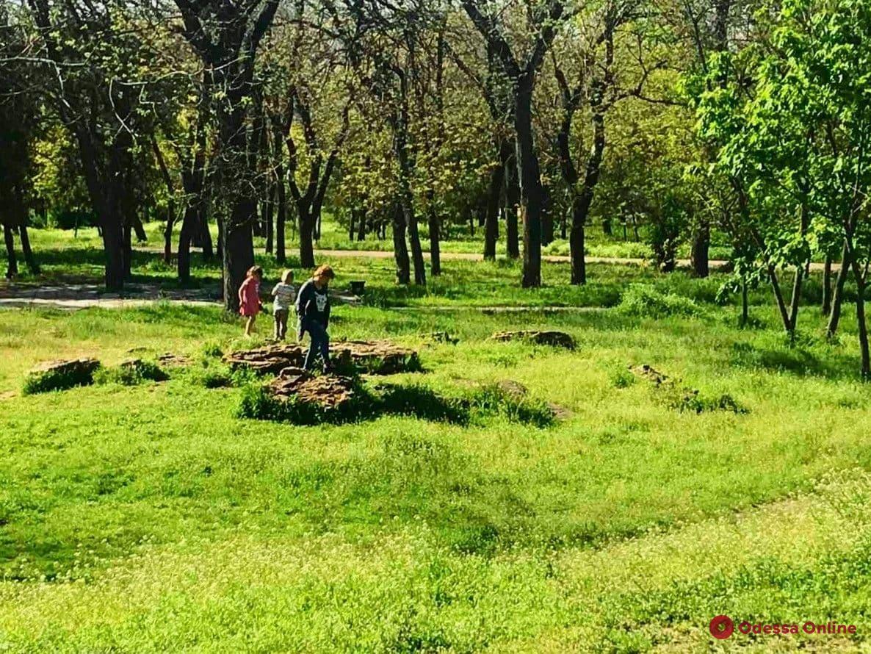 Солнечный день в парке Шевченко (фоторепортаж)