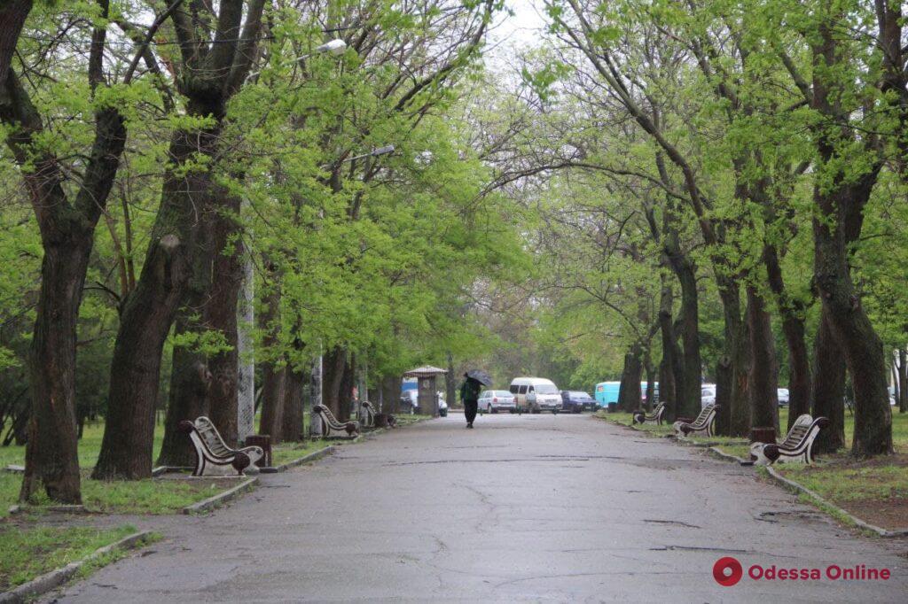 Дождливая майская Одесса (фоторепортаж)