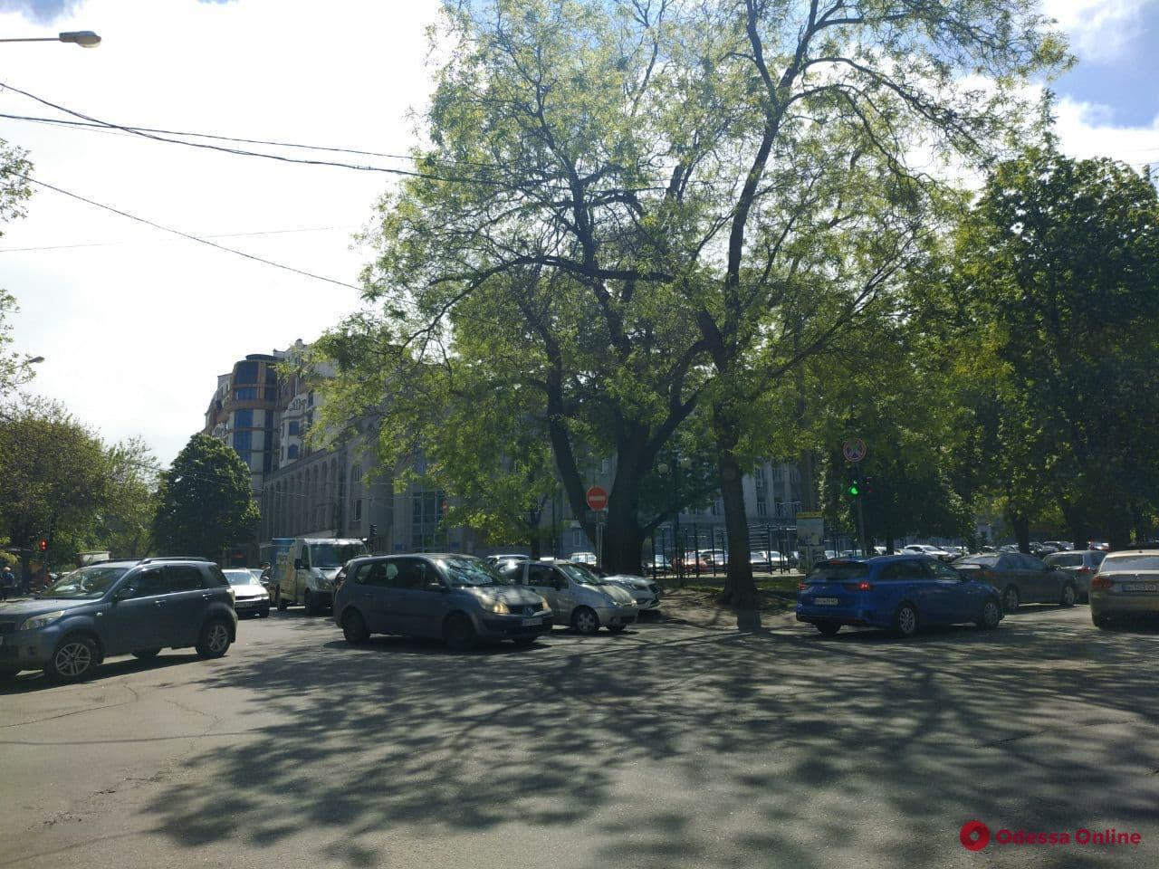 Из-за ДТП на Жуковского автомобилисты вынуждены ехать в объезд (фото)