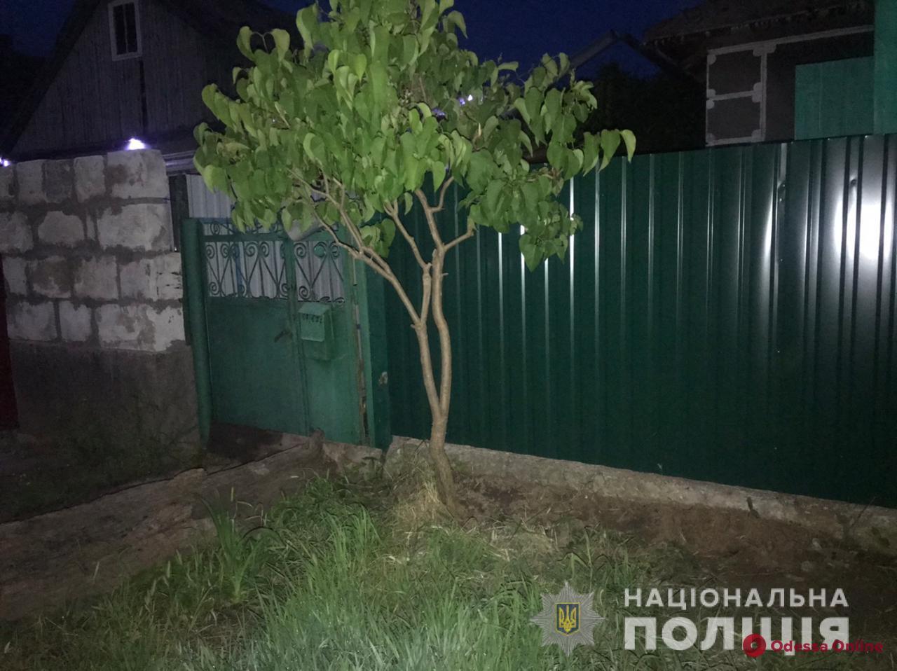 В Белгороде-Днестровском братья разбойники избили пенсионерку и ее племянника