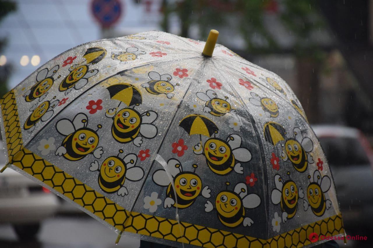 В Одесской области объявлен «желтый» уровень опасности