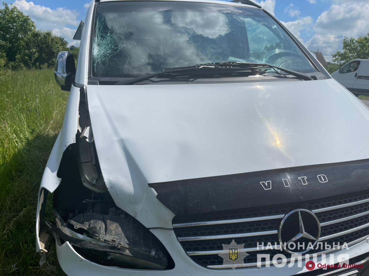 На трассе Одесса-Рени Mercedes насмерть сбил мужчину