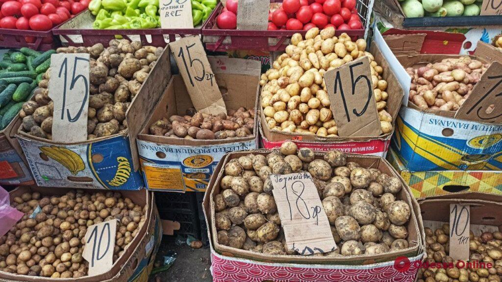 Камбала, творог и персики: воскресные цены на одесском «Привозе»
