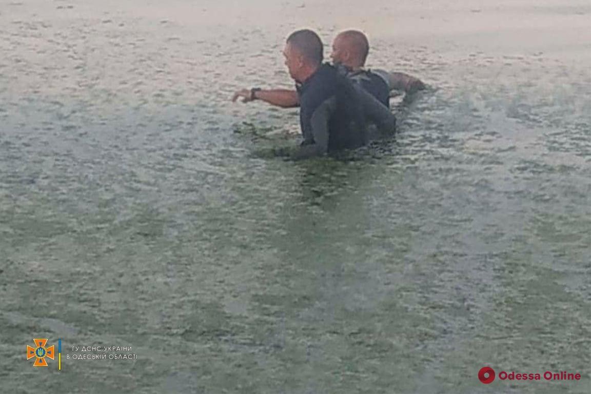 В Затоке продолжаются поиски пропавшего во время купания 13-летнего мальчика