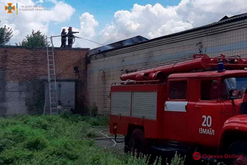 В Одесской области сгорело заброшенное здание возле мясокомбината (фото, видео)