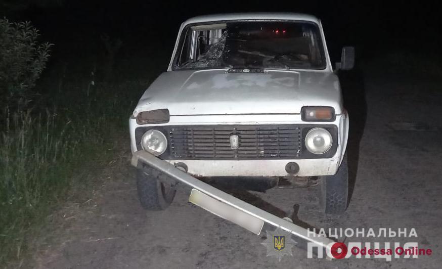 В Одесской области пьяный водитель на «Ниве» насмерть сбил пешехода