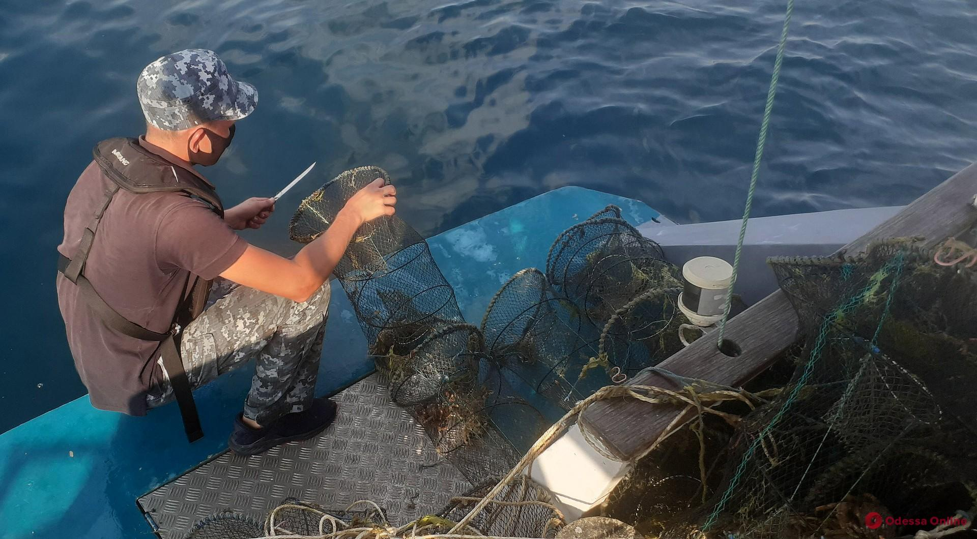 Одесские морские пограничники освободили из браконьерских ловушек 700 крабов (видео)