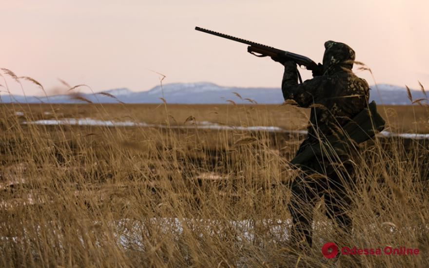 Одесских охотников предупредили: в дикой фауне Украины «гуляет» АЧС