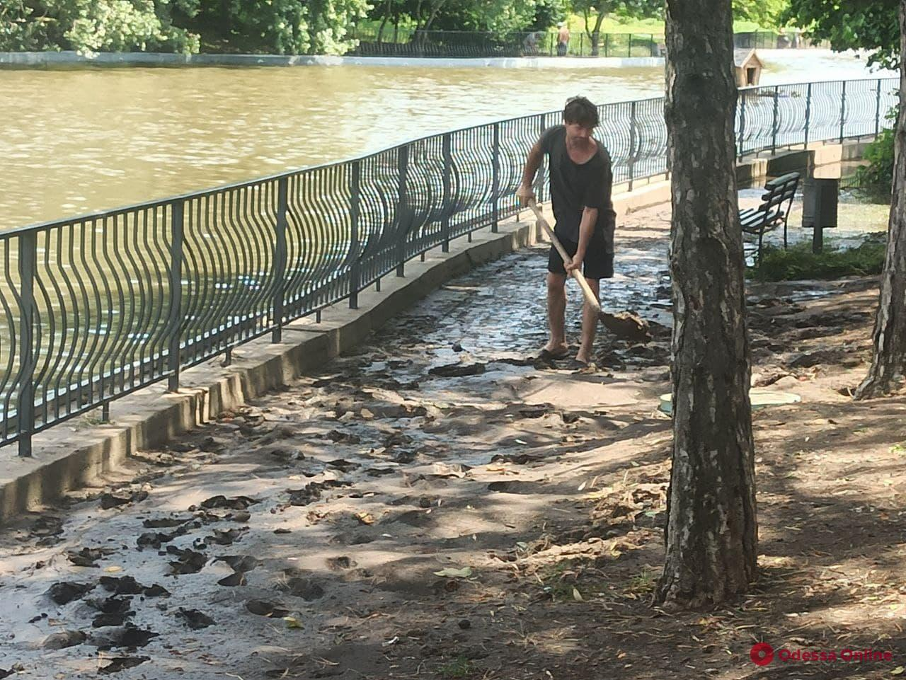 Пруд в парке Победы вышел из берегов — на аллеях ловят и возвращают домой выживших рыб