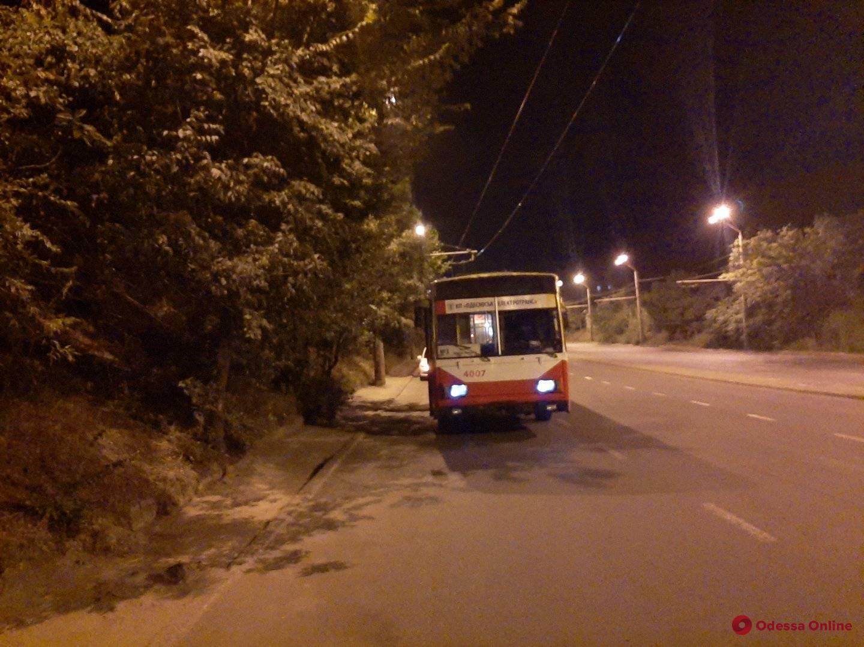 Оборвались провода: один из троллейбусных маршрутов временно прекратил работу