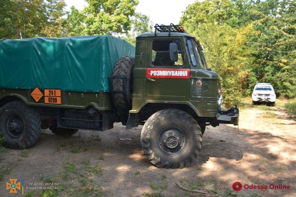 Более 300 единиц: в Одесской области обнаружили артснаряды времен Второй мировой (фото, видео)