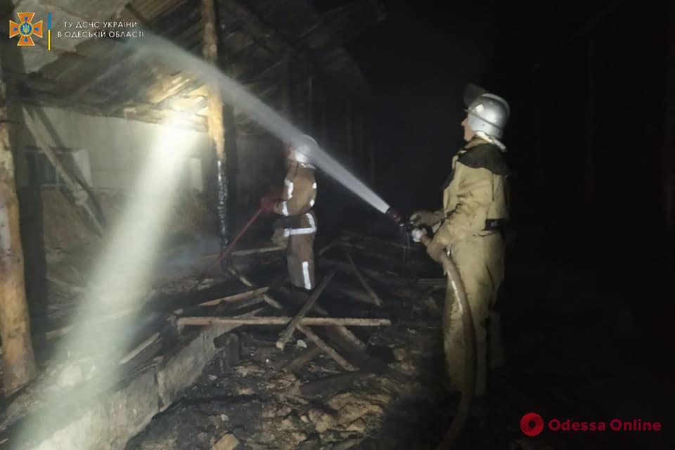 В Одесской области на пепелище сгоревшей овчарни нашли труп