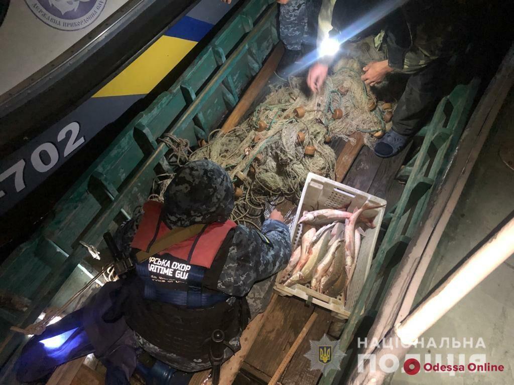 Спецоперация на Дунае: браконьеров задержали, краснокнижную рыбу – отпустили (фото)