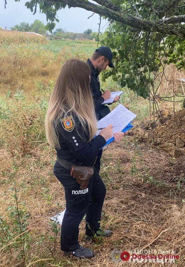 Жителя Одесской области накажут за надругательство над телом умершей сестры