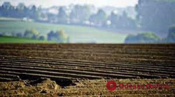 Житель Одесской области самовольно захватил 50 гектаров сельхозземель