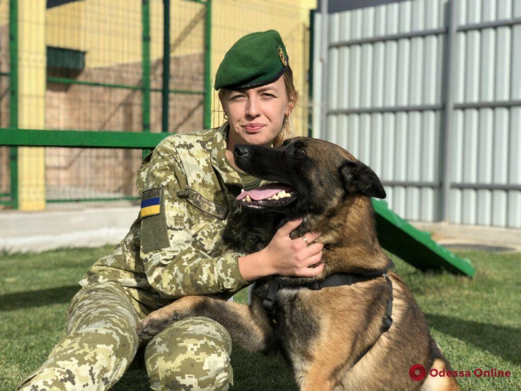 В Одесской области соревновались четвероногие пограничники (фото, видео)