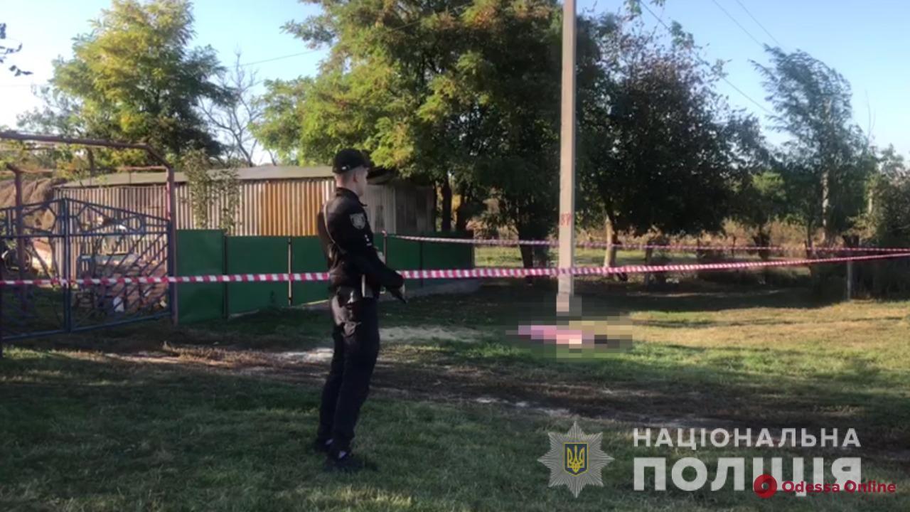 Житель Одесской области из-за сломанного забора на глазах у односельчан убил соседа