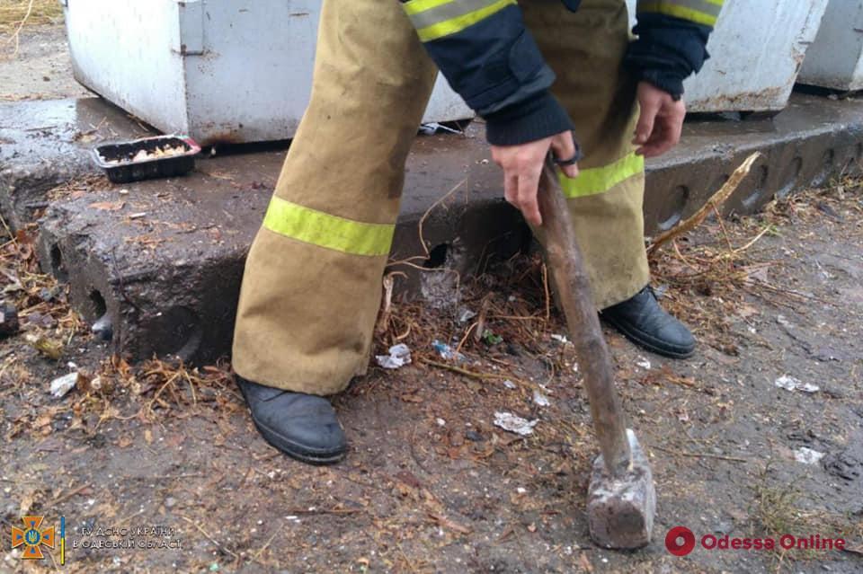 В Одесской области спасатели вызволяли щенков из бетонной трубы