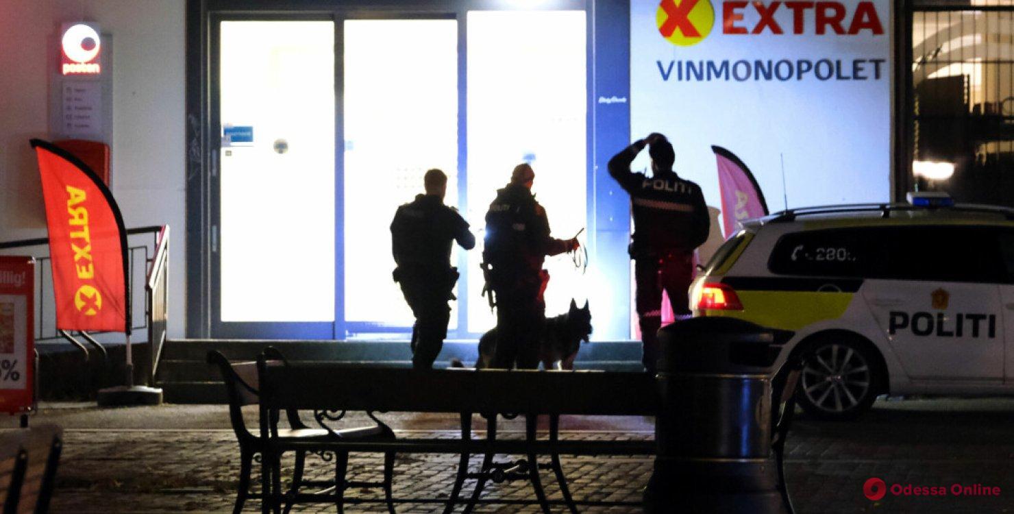 В Норвегии мужчина устроил стрельбу из лука: есть погибшие и раненые