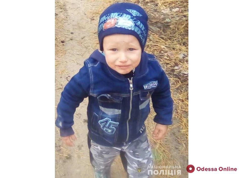 Нужна помощь волонтеров: в Одесской области продолжаются поиски пропавшего двухлетнего мальчика (обновлено)