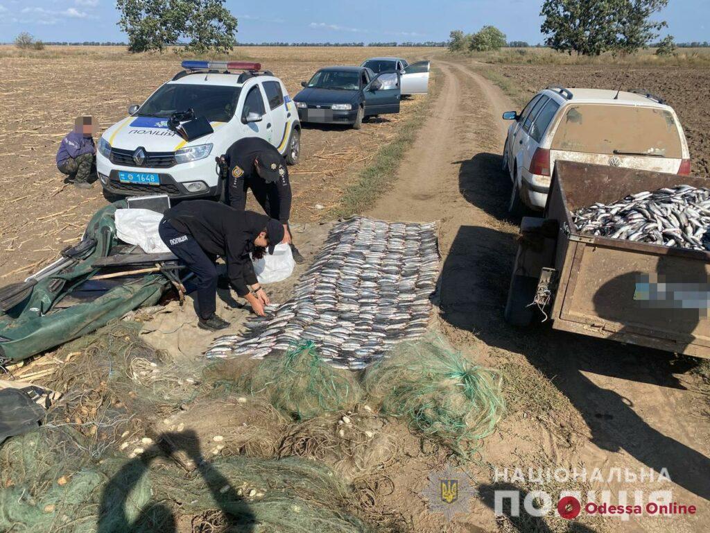 В нацпарке «Тузловские лиманы» задержали браконьеров с крупным уловом кефали