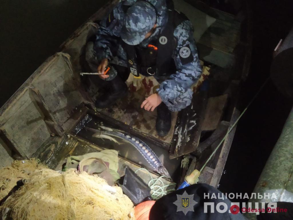 До трех лет за четырех рыб: в Одесской области поймали браконьеров