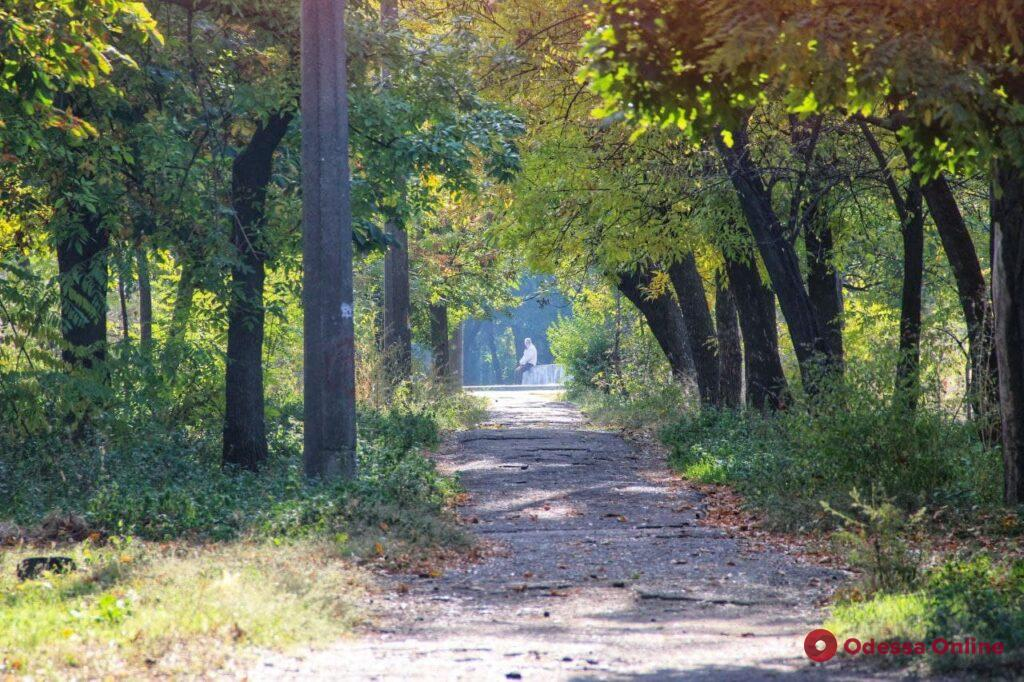 Первые краски осени: прогулка по «одесским заповедникам» (фоторепортаж)