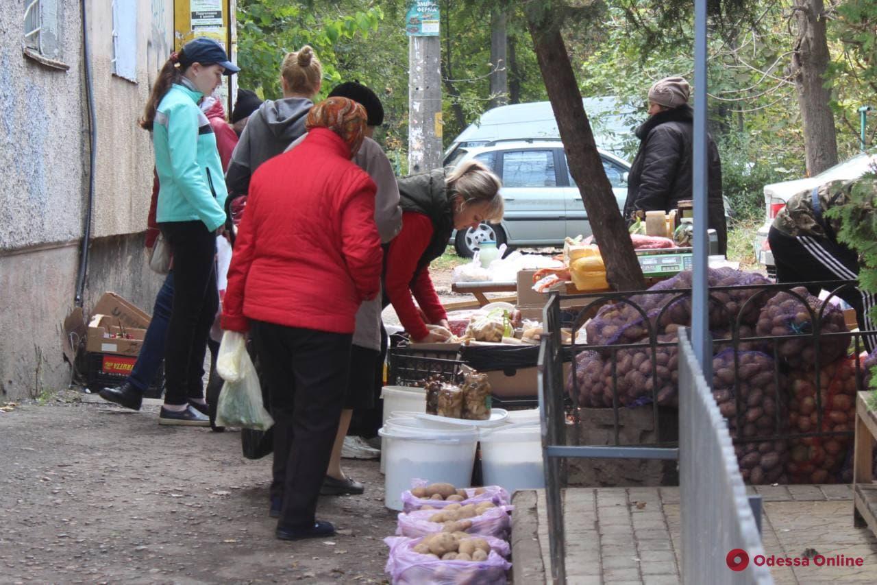 Разогнали, но не всех: в Одессе рядом с ликвидированным стихийным рынком продолжают торговать с земли